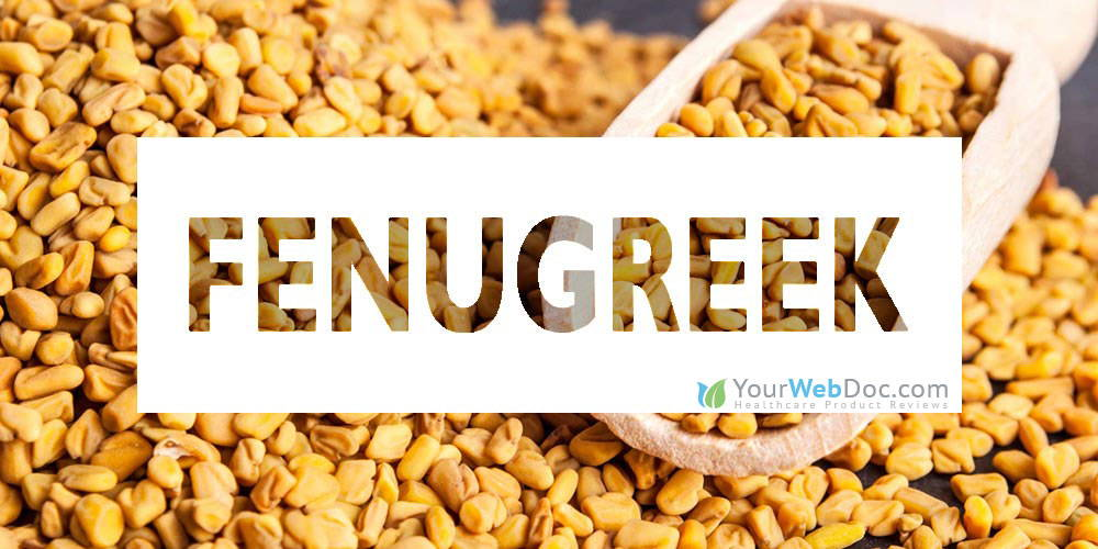 Fenugreek for Sperm Production